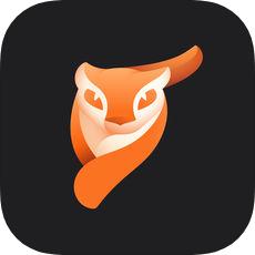 pixaloop prov1.0.8 安卓版