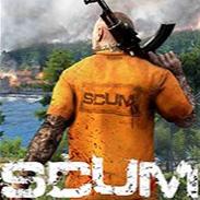 人渣SCUM透视去除草地加速文件