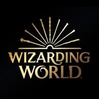 Wizarding world软件