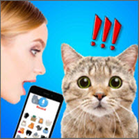 猫狗语言翻译器