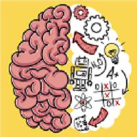 大脑测试(Brain Test)