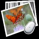 桌面贴照片软件DTopPicture