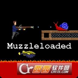 muzzleloaded前装枪