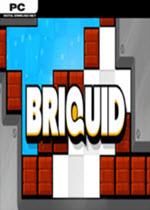液体方块Briquid简体中文免安装版