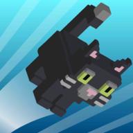 浮皮猫游戏