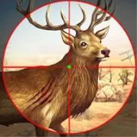 狩猎狙击手3D