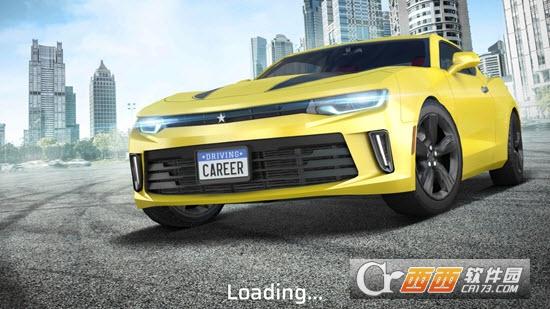驾驶生涯Driving Career