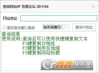 查询网站IP吾爱论坛附源码 V1.0开源