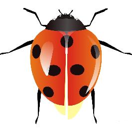 江西昆虫识别软件