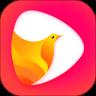 鸽迷视频v1.0.2安卓版