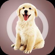 米族人狗交流器app
