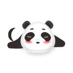 熊猫X FIVE