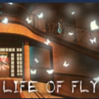 蝇的生活Life of Fly