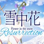 雪中花Flower in the Snow Resurrection