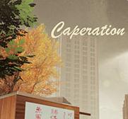 Carperation中文版单机游戏