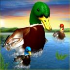 ��M��子模�M器3DVirtual Duck Simulator 3D