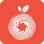 果皮(智能桌面)app1.0.2安卓版