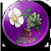 植物大战僵尸乐pad版中文v1.0.0.hhad8 安卓版