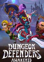 地牢守护者:觉醒(Dungeon Defenders: Awakened)免安装硬盘版