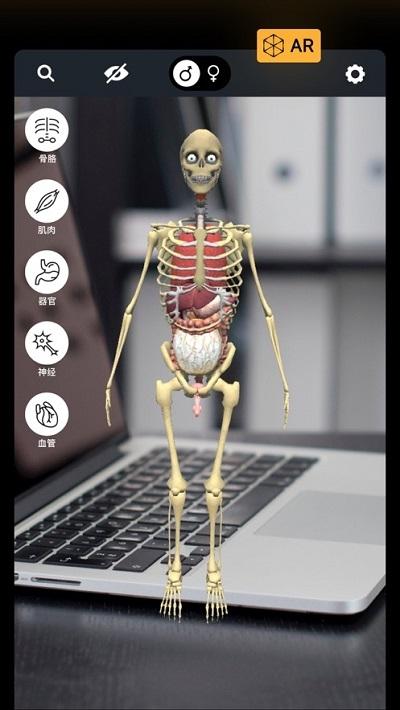 发现人体AR
