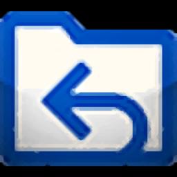 专业数据恢复软件(EasyRecovery Professional 14)