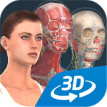 人体系统女性3D软件app