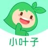 小叶子智能陪练app