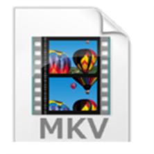 MetaFox2.1.0.0汉化版(MKV格式转换)