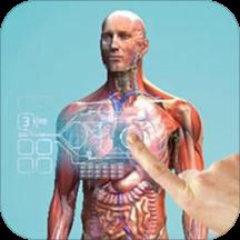 虚拟现实人体解剖软件