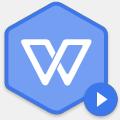 WPS定制版(带定制工具)