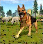 牧羊犬模拟器