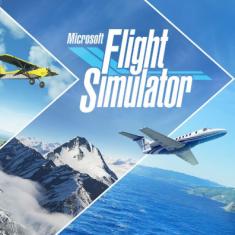 微软飞行模拟2020四项修改器