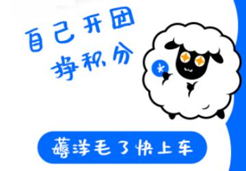 甜觅世界正品海淘_甜觅世界app下载