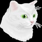 猫与幽灵之路付费破解版