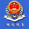 湖北省税务局APP手机版