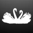 黑天鹅蛋糕v1.3 安卓版