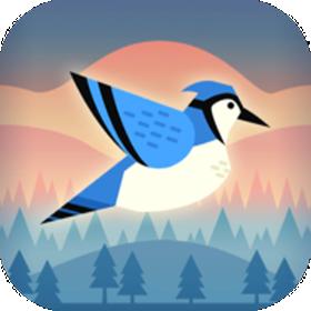 蹦跳小鸟游戏v1.0.0