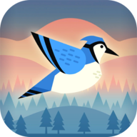 蹦跳小鸟无限金币版v1.0.0安卓版