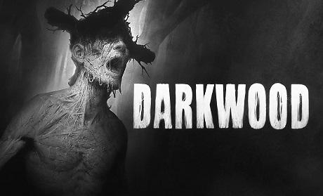 Darkwood下载_Darkwood攻略_Darkwood修改器