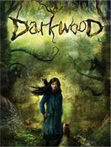 Darkwood免安装绿色中文版