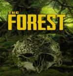 森林高亮洞穴版地图mod整合包最新绿色版