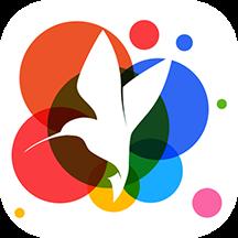 小鸟壁纸手机版v2.0.3安卓版