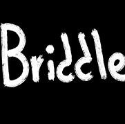 Briddle游戏中文绿色完整版