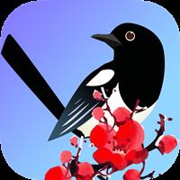喜鹊快讯(转发文章赚钱)v1.0安卓版