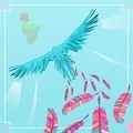 旅行小鸟v1.0.0