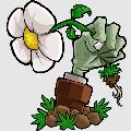 植物大�鸾┦�mixed版