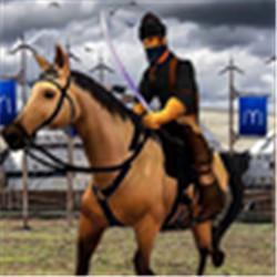 奥斯曼加齐模拟狩猎