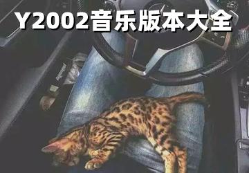Y2002音乐