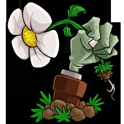 植物大战僵尸北美版电脑版绿色免费版