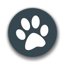 兽音翻译器软件下载